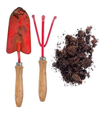 Trädgård - Spade
